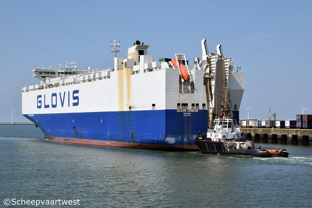 scheepvaartwest - Glovis Condor - IMO 9414876