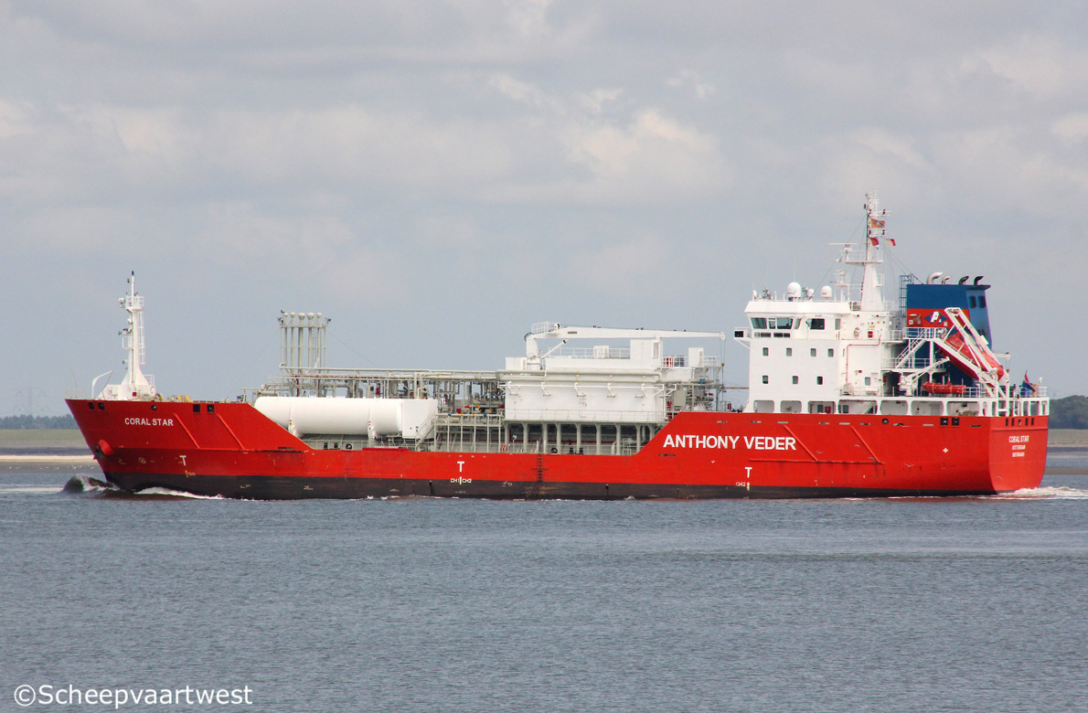 Coral Star 07